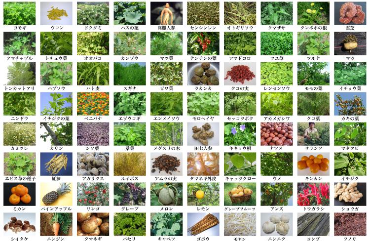 野草をメインに80種類の原料使用